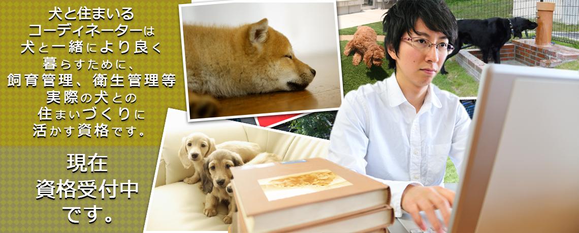 犬と住まいるコーディネーター資格とは?